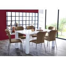 ELKE 140x90-es MAGASFÉNYŰ FEHÉR asztal 6db ZELL cappuccino székkel
