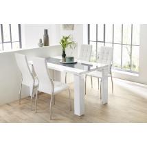 AHAUS 140x80-as MAGASFÉNYŰ FEHÉR asztal 4 db FREIBURG fehér székkel