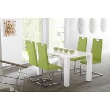 ELKE 120x90-es MAGASFÉNYŰ FEHÉR asztal 4db EUGEN zöld székkel